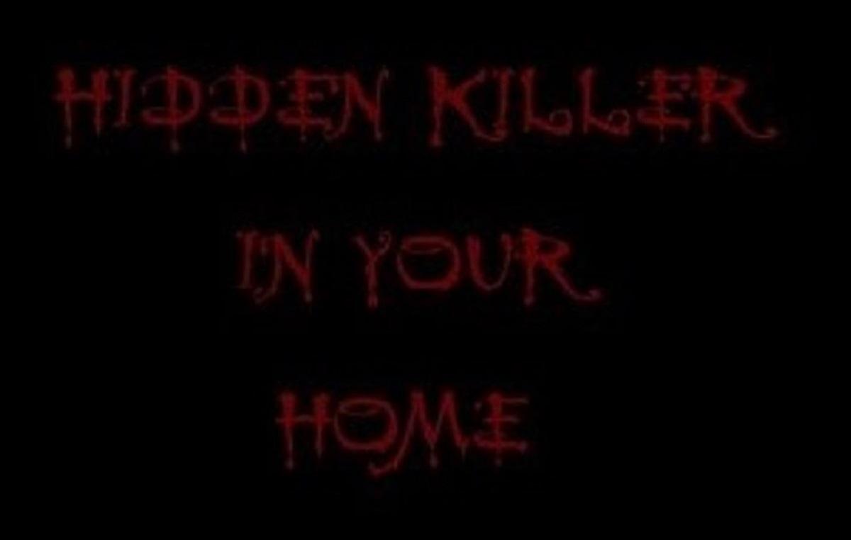 killer blog (3)